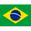 Brazylijska